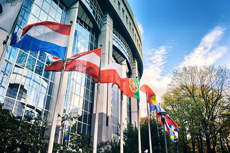 Parlamento europeo, Iva con aliquota massima del 25%