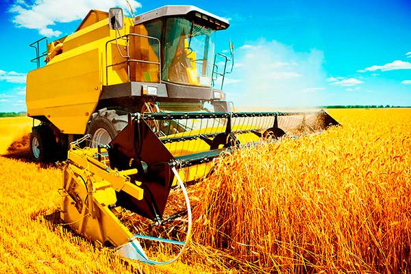 CIGD aziende agricole, precluso il pagamento a conguaglio